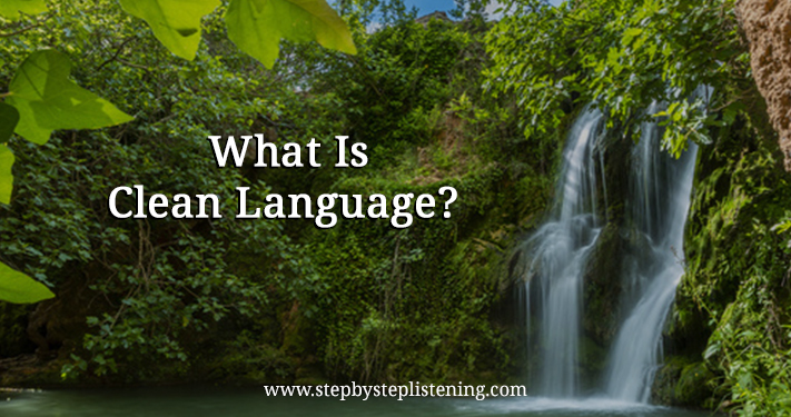 what is clean language
