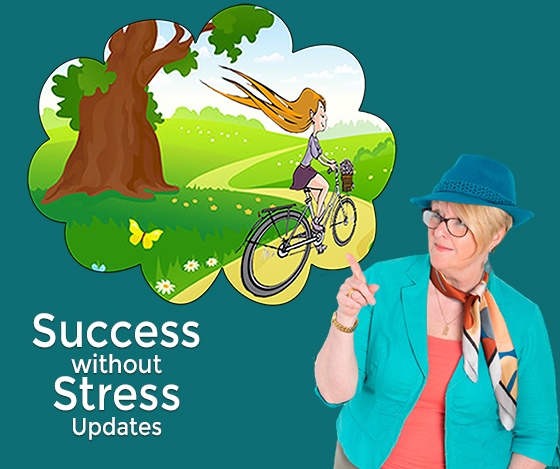 success without stress updates